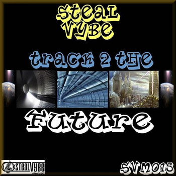 Steal Vybe - Steal Vybe presents. Track 2 the future