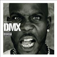 DMX - The Best Of DMX (Explicit)