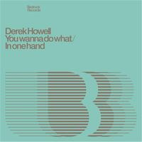 Derek Howell - You Wanna Do What / In One Hand
