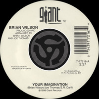 Brian Wilson - Your Imagination / Your Imagination (A Cappella) (45 Version)