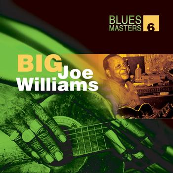 Big Joe Williams - Blues Masters Volume 6