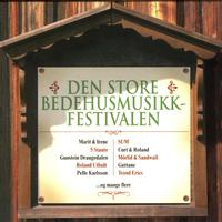 Various Artists - Den Store Bedehusmusikkfestivalen (2 Cd)