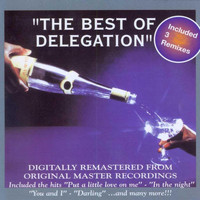 Delegation - The Best of Delegation
