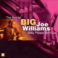 Big Joe Williams - Baby Please Don't Go (The Best of)