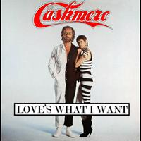 Cashmere - Love's What I Want
