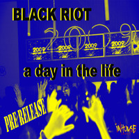 Black Riot - A Day In The Life-2009 Mixes-WMC Pre-Release