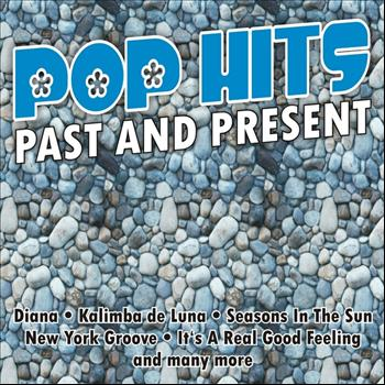 Various Artists - Pop Hits - Past And Present