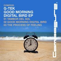 G-tek - Good Morning Digital Bird EP