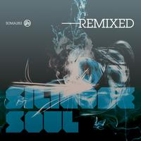 Silicone Soul - Silicone Soul Remixed