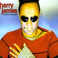 Harry James - My Kind Of People