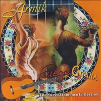 Armik - Fuego Gitana, The Nuevo Flamenco Collection