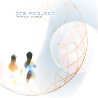 DT8 Project - Perfect World