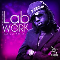 Various Artists - Di Genius Presents-Labwork Vol.1 (Explicit)