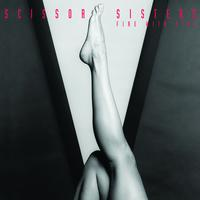 Scissor Sisters - Fire With Fire