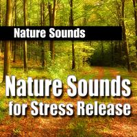 Nature Sounds - Nature Sounds for Stress Release