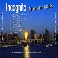 Incognito - Manhattan Nights