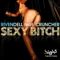 Rivendell feat. Cruncher - Sexy Bitch (Explicit)