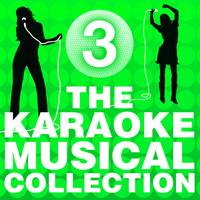 The City of Prague Philharmonic Orchestra - The Karaoke Musical Collection, Vol. 3