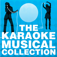 The City of Prague Philharmonic Orchestra - The Karaoke Musical Collection, Vol. 1