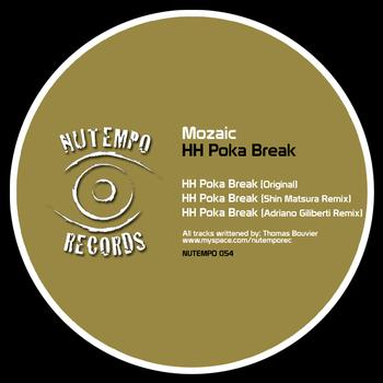 Mozaic - HH Poka Break