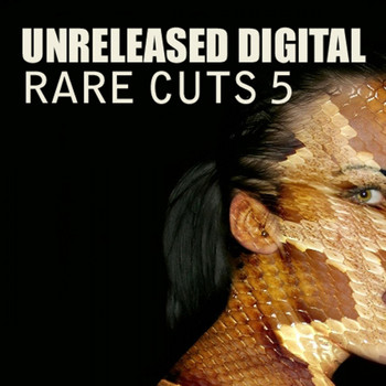 Various Artists - Rare Cuts 5 - Essentials