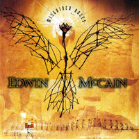 Edwin McCain - Misguided Roses