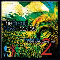 The Brand New Heavies - Elephantitis 2: The Funk & House Remixes