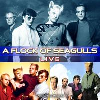 A Flock Of Seagulls - Live