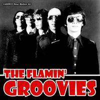 The Flamin' Groovies - Backtracks