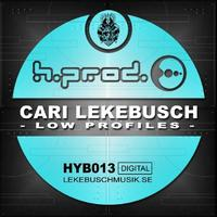 Cari Lekebusch - Low Profiles