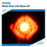 Anske - What Does Life Mean
