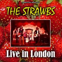 The Strawbs - Live In London