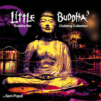 Sam Popat - Little Buddha 3