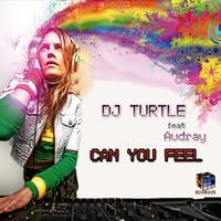 Dj Turtle featuring Audrey - Can You Feel