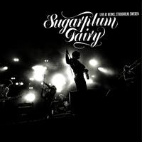 Sugarplum Fairy - Live At Berns, Stockholm/Sweden