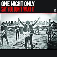One Night Only - Say You Don't Want It ([Blank])