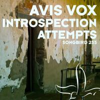 Avis Vox - Introspection Attempts