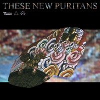 These New Puritans - Hologram
