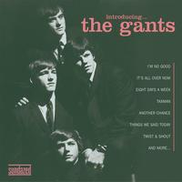 The Gants - Introducing The Gants