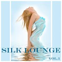 Various Artists - Silk Lounge vol.1