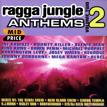 Various Artists - Ragga Jungle Anthems Vol. Two