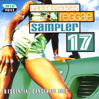 Various Artists - Sampler 17