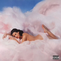 Katy Perry - Teenage Dream (Explicit)