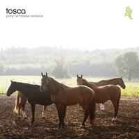 Tosca - Pony - No Hassle Versions