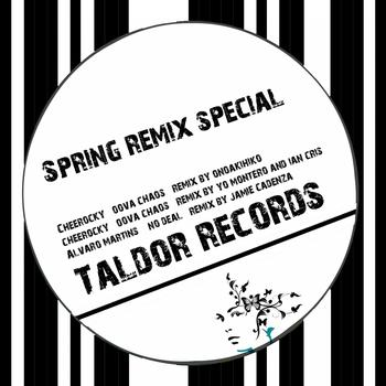 Various Artists - Spring Remix Special