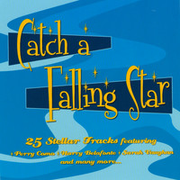 Various Artists - Catch A Falling Star