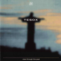 Tesox - View Through The Past