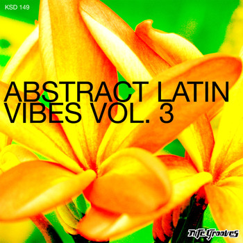 Various Artists - Abstract Latin Vibes Vol.3