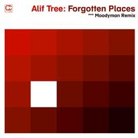 Alif Tree - Forgotten Places (Moodymann Remix)