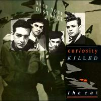 Curiosity Killed The Cat - Keep Your Distance